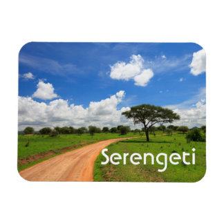 African landscape magnets