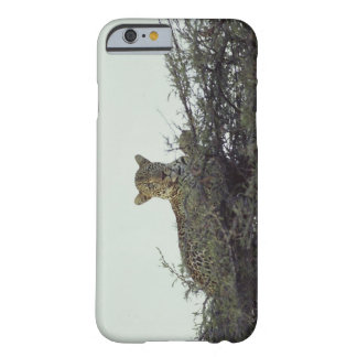 African leopard barely there iPhone 6 case