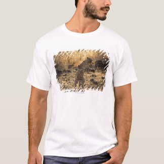 African leopard on hind legs , Namibia , Africa T-Shirt