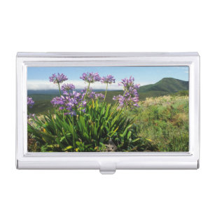 Lily business card holders cases zazzle african lily agapanthus praecox mossel bay business card holder reheart Gallery
