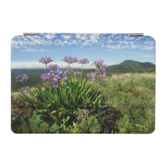 African Lily (Agapanthus praecox), Mossel Bay iPad Mini Cover