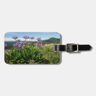 African Lily (Agapanthus praecox), Mossel Bay Luggage Tag