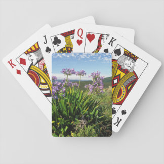 African Lily (Agapanthus praecox), Mossel Bay Playing Cards