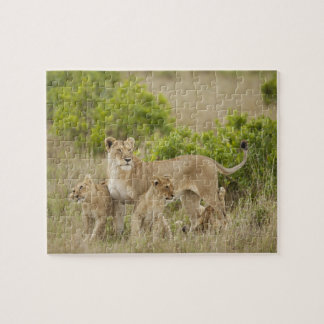 African Lion adult female with cubs, alert Jigsaw Puzzle