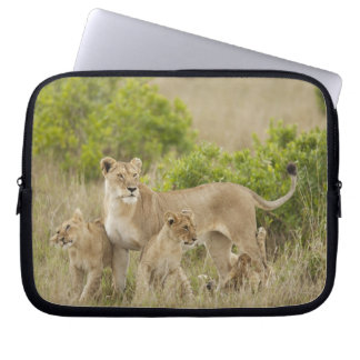 African Lion adult female with cubs, alert Laptop Sleeve