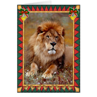 African Lion Animal Blank Christmas Card