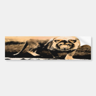African Lion Bumper Stickers