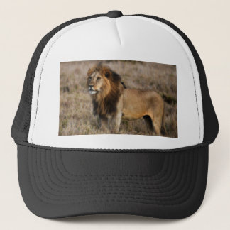 African Lion in Grass Trucker Hat