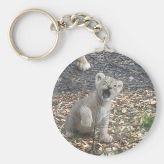 African lion kid key chains