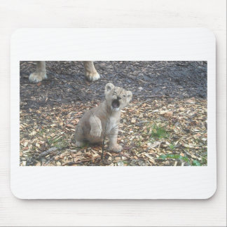 African lion kid mouse pad