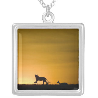 African Lion, Panthera leo, chasing gazelle Silver Plated Necklace