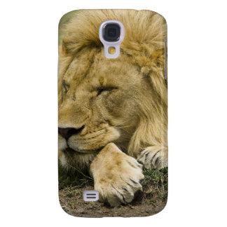 African Lion, Panthera leo, laying down asleep Galaxy S4 Case