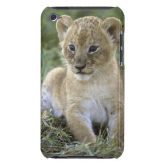 African lion, Panthera leo), Tanzania, Barely There iPod Case