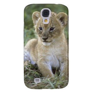 African lion, Panthera leo), Tanzania, Galaxy S4 Case