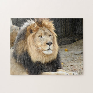 African Lion Puzzle