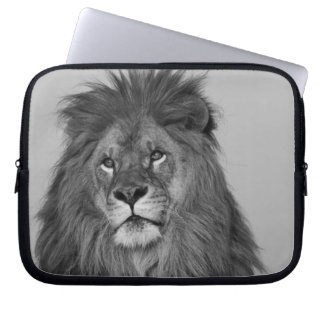 African Lion resting on rock cliff Computer Sleeve