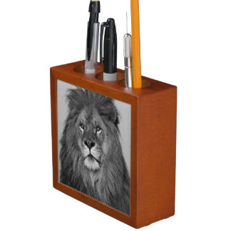 African Lion resting on rock cliff Pencil/Pen Holder