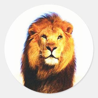 African Lion Round Sticker