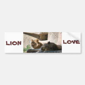 African Lions Bumper Stickers