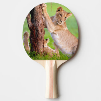 African Lions Kgalagadi Ping Pong Paddle