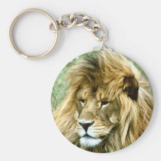 African male Lion Key Ring