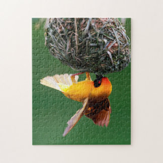 African Masked-Weaver (Ploceus Velatus) Jigsaw Puzzle