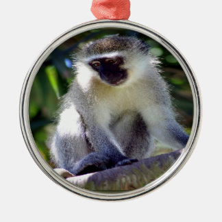 African Monkey Silver-Colored Round Decoration