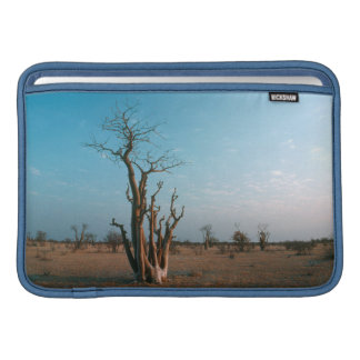 African Moringo Tree On Plain, Etosha National MacBook Sleeve