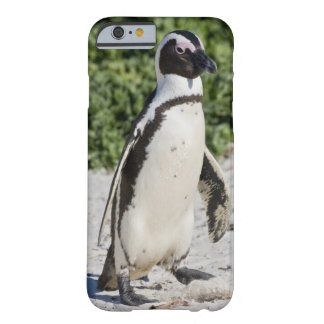 African Penguin, formerly known as Jackass Barely There iPhone 6 Case