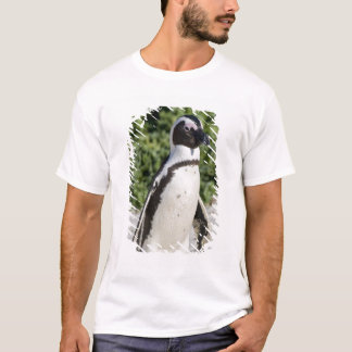 African Penguin, formerly known as Jackass T-Shirt