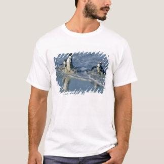 African Penguin, (Spheniscus demersus), coming 2 T-Shirt