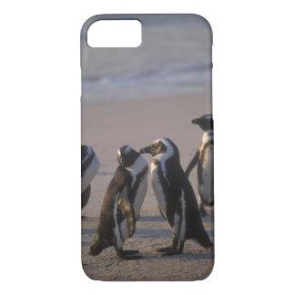 African Penguin (Spheniscus demersus) or Jackass 2 iPhone 8/7 Case