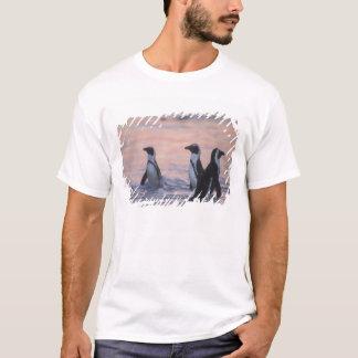 African Penguin (Spheniscus demersus) or Jackass 3 T-Shirt
