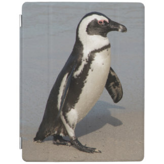 African Penguin Walking iPad Cover