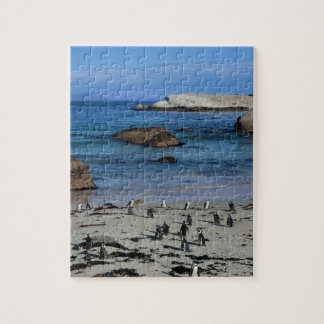 African Penguins at Boulders Beach, in Cape Town, Jigsaw Puzzle