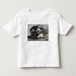 African Penguins, formerly known as Jackass 2 Toddler T-Shirt