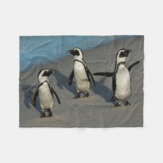 African Penguins | Spheniscus Demersus Fleece Blanket