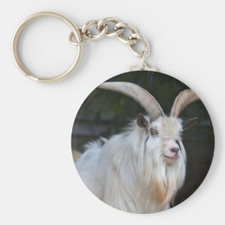 African Pygmy Goat Keyring Basic Round Button Key Ring