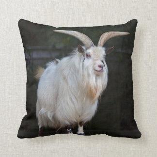African Pygmy Goat Pillow