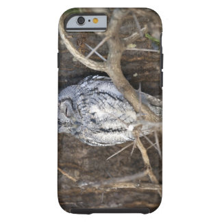 African Scops-Owl, Kruger National Park, South Tough iPhone 6 Case