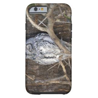 African Scops-Owl, Kruger National Park, South Tough iPhone 6 Case