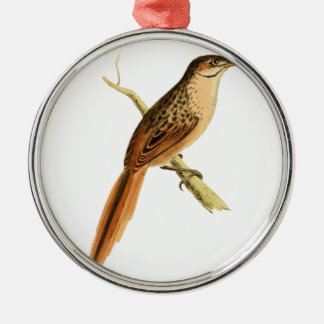African Soft-tail Christmas Ornament