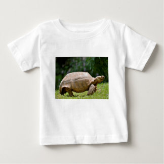 African spurred tortoise walking on grass baby T-Shirt