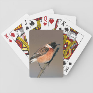African Stonechat (Saxicola Torquata) On Twig Playing Cards
