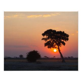 African Sunrise Art Photo