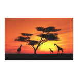 African Sunset Gallery Wrapped Canvas