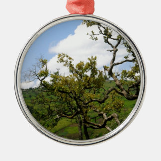 African Tree of Hope Silver-Colored Round Decoration