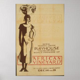 African Vineyard Debut Poster