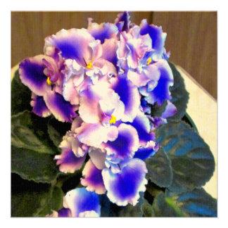 African Violet Blue Custom Invite