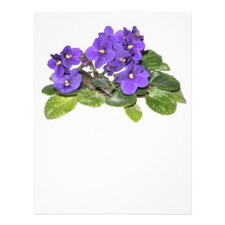 African violet custom flyer